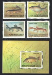 Kyrgyzstan Fish Catfish Loach Dace Osman 4v+MS 1994 MNH SC#51a-52