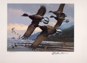 OREGON #3 1986 STATE DUCK STAMP PRINT PACIFIC BRANT  by Michael Sieve