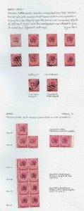Perak 1887 1c on 2c Bright Rose collection inc Mint Multiples