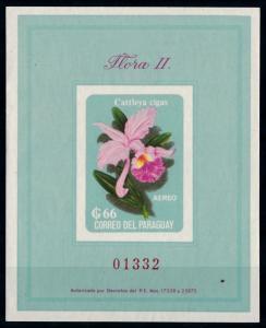 [66216] Paraguay 1963 Flora Flower Blume Airmail NO GUM Souvenir Sheet