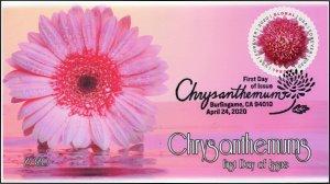 20-088, 2020, Chrysanthemum, Pictorial Postmark, First Day Cover, International
