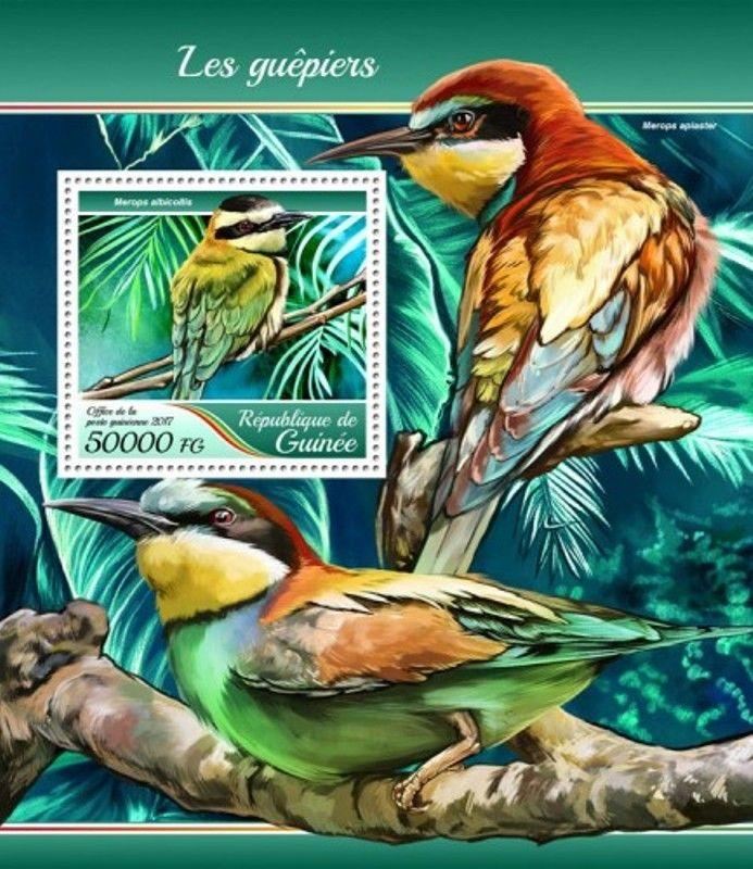 Guinea - 2017 Bee-eater Birds - Stamp Souvenir Sheet - GU17410b