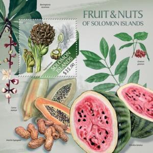 SOLOMON ISLANDS 2013 SHEET FRUITS slm13506b