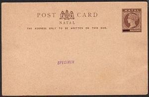 NATAL QV ½d postal card optd SPECIMEN.......................16989