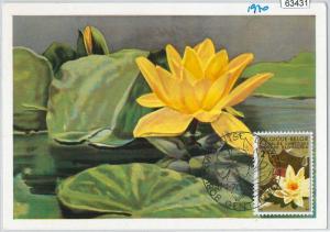 63431 -  BELGIUM - POSTAL HISTORY: MAXIMUM CARD 1970 -  FLOWERS