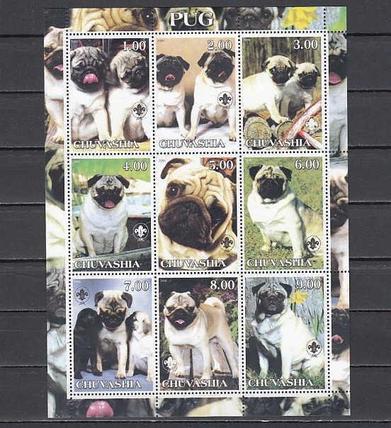 Chuvashia, 2000 Russian Local. Pugs, Dogs sheet of 9. ^