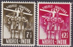 Netherlands Indies #B30-1  F-VF Unused  CV $2.50  Z1