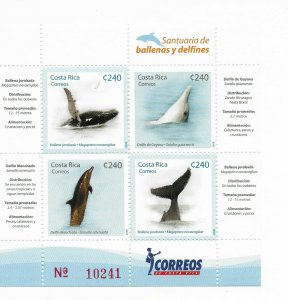 COSTA RICA 2008, WHALES AND DOLPHINS, MARINE FAUNA, MINIATURE SHEET MNH