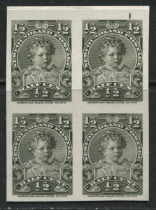 Newfoundland 1897 1/2 cent Plate Proof block of 4