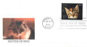 #3670 Neuter - Spay - Kitten Fleetwood FDC
