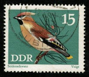 Bird (T-4909)
