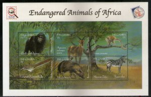 Gambia 2000 Gorilla Zebra Bird Wildlife Animals Sc 2194 Sheetlet MNH # 9703