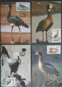 RSA South Africa Venda 1987 Water Fowl Birds Unused Max Cards with Stamps