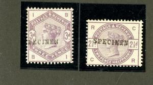 Great Britain Stamps # 101-2 FVF OG LH Specimen