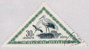 Hungary Stork (AP111902)