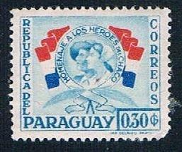 Paraguay Flags 30 - pickastamp (PP9R501)