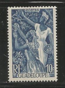 GUADALOUPE, 201, MH, FARMING