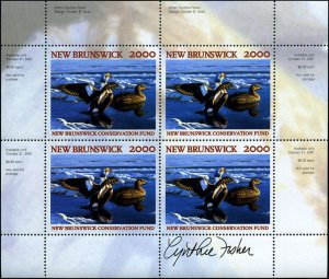 2000 New Brunswick King Elder Duck Wildlife by C Fisher