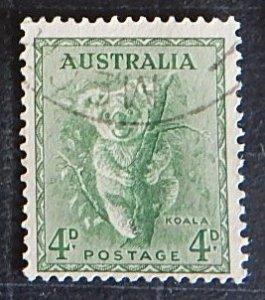 Australia, Koala, Animals, (№1367-T)