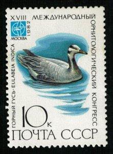 Bird, 10 kop, 1982, MNH ** (T-7498)