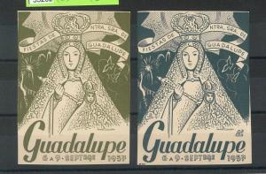 55202 -  VINTAGE  POSTER STAMP Label - SPAIN: Religious Fete GUADALUPE 1957