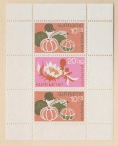 Surinam Scott #B213a Stamps - Mint NH Souvenir Sheet
