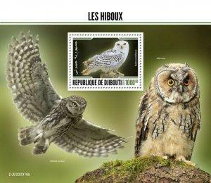 2020/06- DJIBOUTI - BIRDS  OWLS      1V MNH**