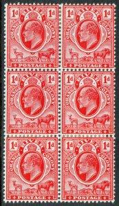 Orange Free State KEVII 1903 1d Scarlet Orange River Block x 6 SG140 Mint MH