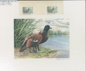 NEW ZEALAND #1 1993 STATE DUCK STAMP PRINT PARADISE SHELL DUCK Adele Earnshaw