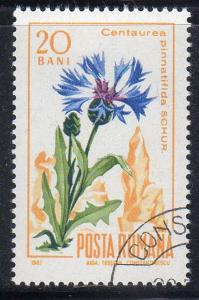 Romania #1925 - CTO-NH - Centaury Flower