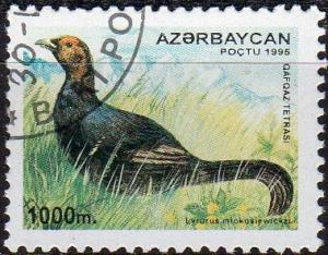 Azerbaijan 545 - Cto - 1000m Caucasian Black Grouse (Dark) (1995) (cv $3.00) (1)