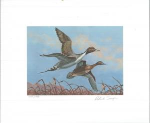OKLAHOMA #1 1980  STATE DUCK STAMP PRINT PINTAILS byPat Sawyer Reg $395