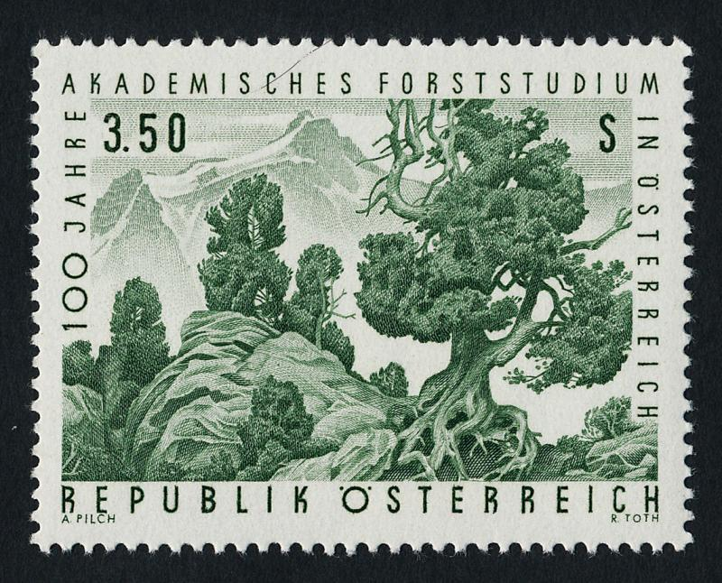 Austria 802 MNH Forestry, Mountains, Stone Pine Trees