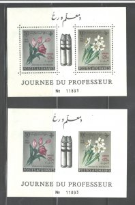 AFGHANISTAN 1961 #548 M.S's Perf & Imper.. MNH TEACHER's DAY
