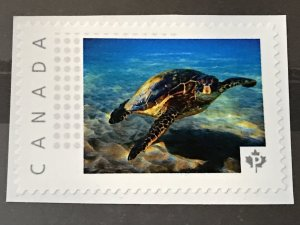 Canada Post Picture Postage Mint NH *Turtle Swimming*  *P* denomination