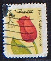 USA, Flowers, (№1557-Т)
