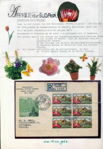 South Africa 1960s/90s FLOWERS M&U Cover Sheets Appx 100 Items(ELF555