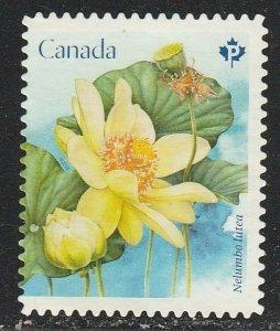 Canada   3089     (O)    2018