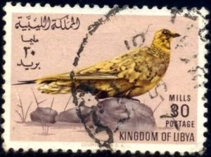 Bird, Spotted Sandgrouse, Libya stamp SC#273 Used
