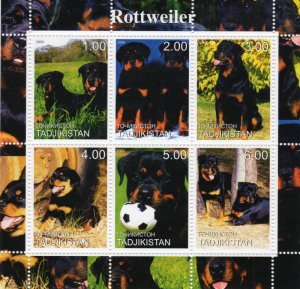 Kyrgyzstan 2000 DOGS ROTTWEILER Sheet Perforated Mint (NH)
