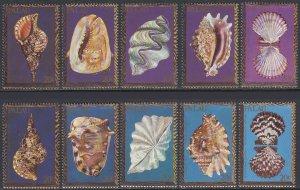 Palau 41-50 MNH - Seashells
