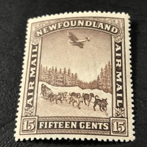 NEW FOUNDLAND # C6-MINT/NEVER HINGED----AIR/MAIL----1931(LOTA)