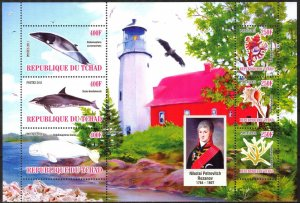 Chad 2011 Lighthouses Shells Whales (9) MNH Cinderella !