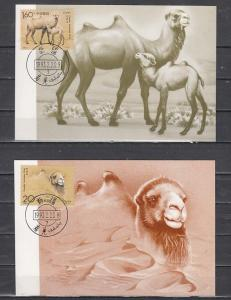 China, Rep. Scott cat. 2433-2434. Camels issue on 2 Maximum Cards.