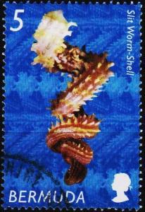 Bermuda. 2002  5c  S.G.892  Fine Used