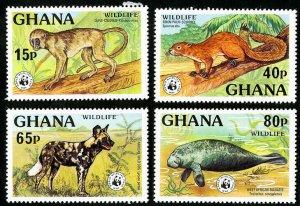 Ghana Stamps # 621-4 MNH VF WWF set