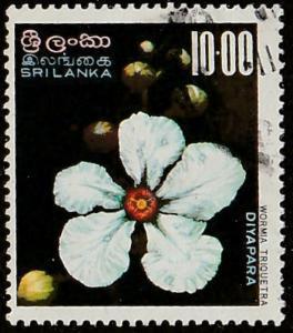 Sri Lanka, stamp, used, flower, white, topical collector, Scott# 498,  #M499