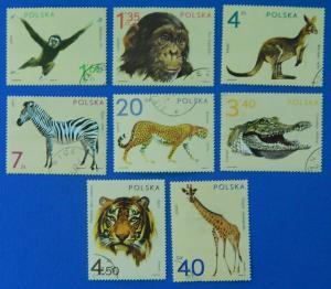 Animals safari, Europa, Poland, №56-Т