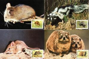 Bophuthatswana - 1990 Small Mammals Maxi Card Set SG 235-238