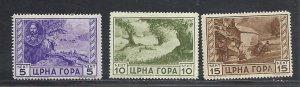Montenegro #2N33-5 mint cv $7.20